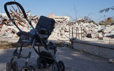 Brigada de la aceituna. Crónica en Palestina.