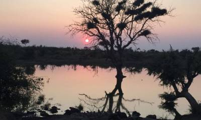 Um Refúgio no meio da Savana: Lodge Rhulani é um paraíso privado, localizado na Africa do Sul