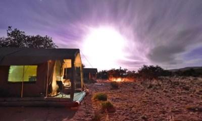 Sanbona: conheça um dos melhores safaris próximo a Cape Town