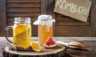 Kombucha, a bebida probiótica queridinha do momento
