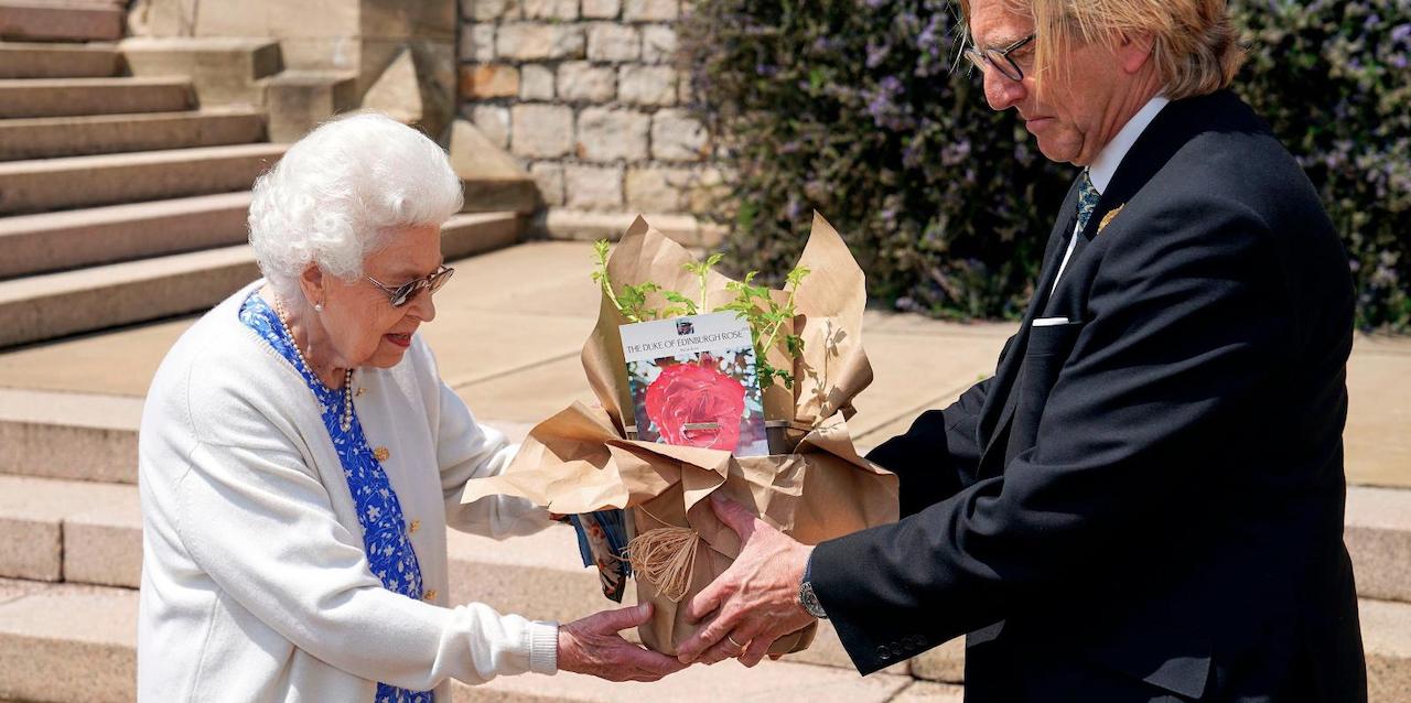 Reina Isabel recibe Rosa de Edimburgo