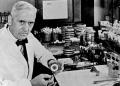 Alexander Fleming sentado en laboratorio médico