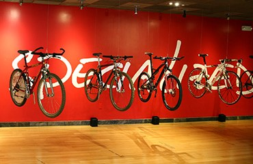 Specialized productos 2016