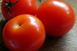 variedades tradicionales del tomate resistentes a tres virus gracias a umh