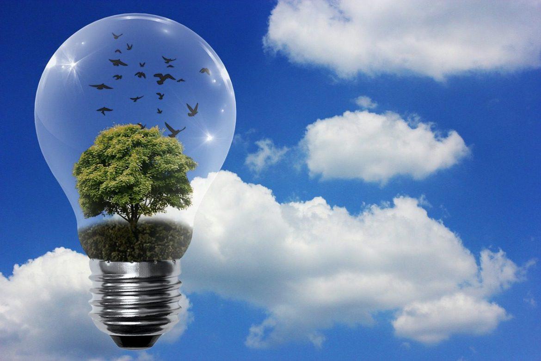 la convocatoria de becas got energy talent busca investigadores en energía renovable e inteligente