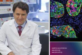 primera inmunoterapia contra el cáncer desarrollada íntegramente en españa