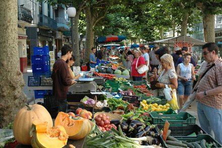 pruebas científicas de que los alimentos ecológicos