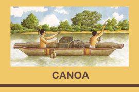 canoa,una plataforma panhispánica para internacionalizar la cultura en español,