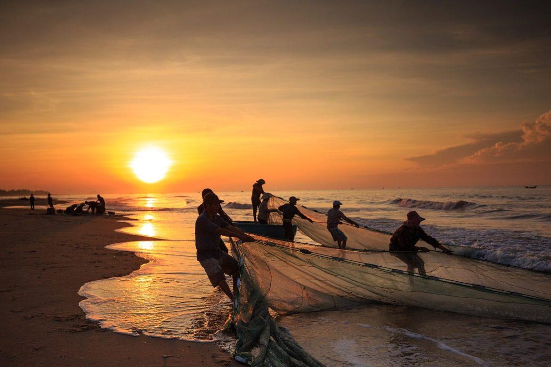 alimentos marinos sostenibles