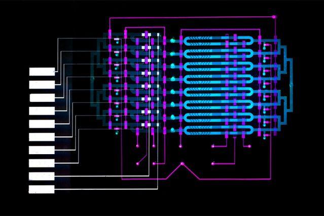 mit ,el dispositivo de microfluidos ayuda a diagnosticar la sepsis en minutos