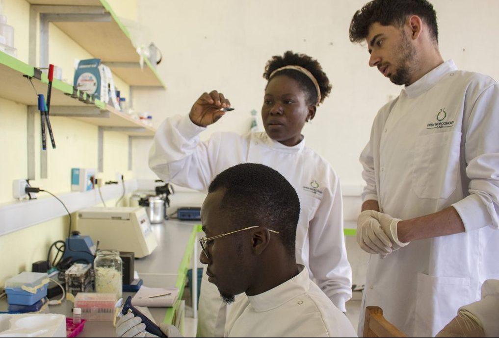 stanford ayuda a que la biotecnología sea accesible a nivel mundial