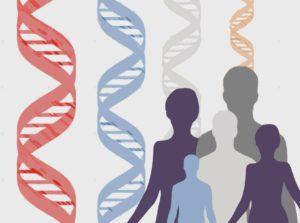 la evolución del sistema inmunitario está asociada con la aparición de enfermedades inflamatorias y autoinmunes
