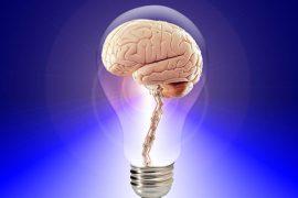 conexión entre intestino y cerebro explicaría el autismo