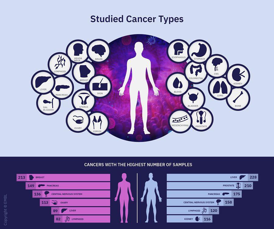 nih , los genomas del cáncer