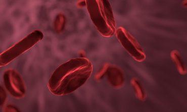 nanosondas con aplicaciones en el diagnóstico y tratamiento de enfermedades