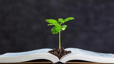 energía y medioambiente educación para el cambio