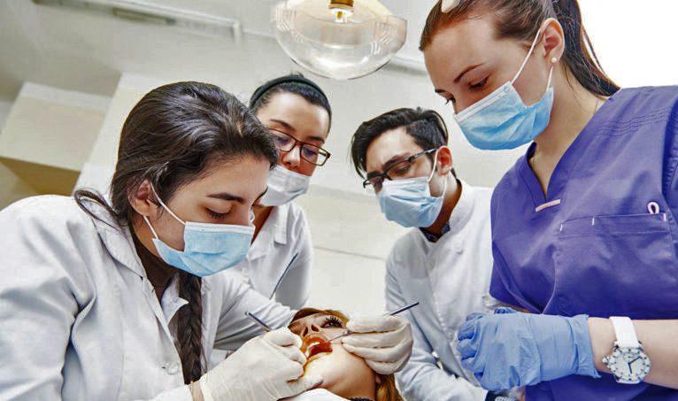 odontología de la ucm, en la regeneración de huesos maxilares mediante aplicación de células madre