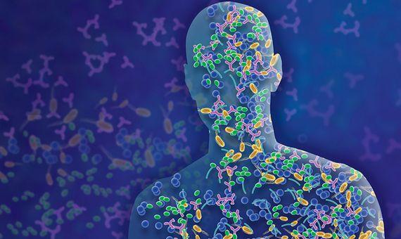 nueva fase de investigación de microbiomas