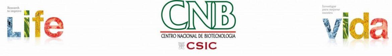 cnb/csic – la vacuna española tecnología única que puede dar una respuesta duradera