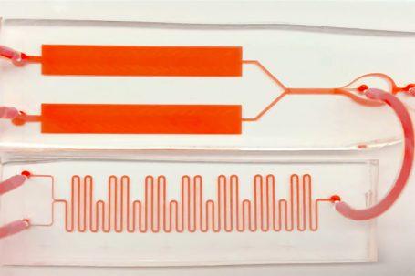 stanford, chip que convierte instantáneas de análisis de sangre en películas continuas