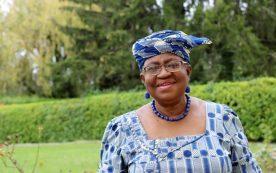 la nigeriana ngozi okonjo iweala sera la primera mujer en dirigir la omc 976x612 1