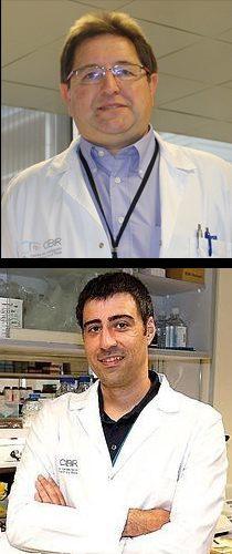 Jose Garcia Pichel y Ignacio Larrayoz
