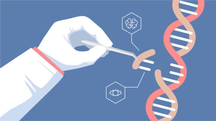 La terapia genetica CRISPR alivia el dolor mejor que los opiaceos