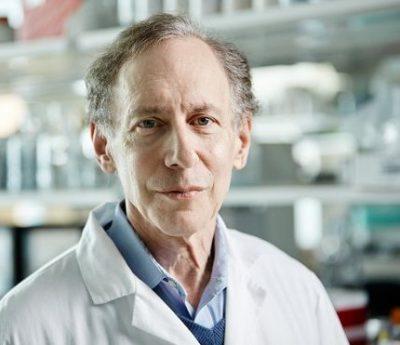 Robert Langer profesor del Instituto David H Koch en el MIT