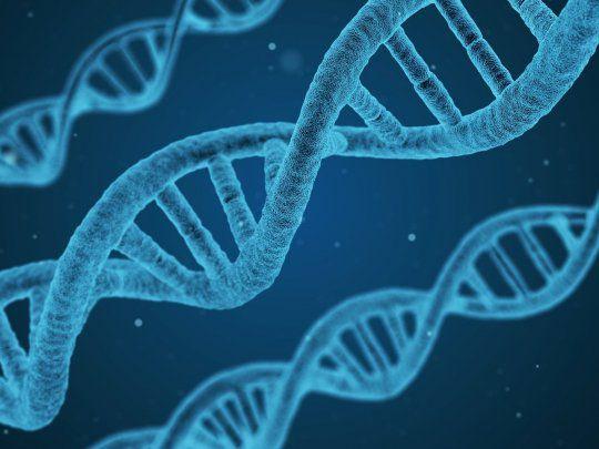 Secuencian por primera vez el genoma completo
