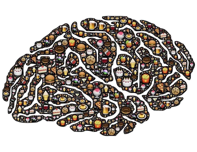 Ayuno y comportamiento afectan las neuronas del hambre1