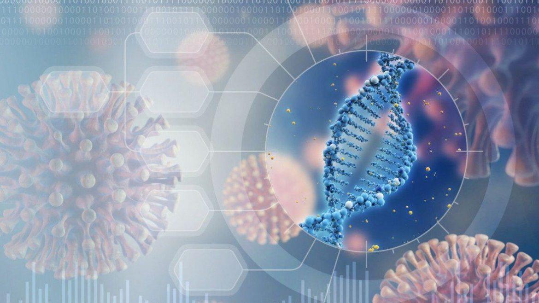 Proximo virus de animales a humanos