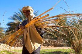 el foro mundial sobre el acceso a la tierra y a los recursos naturales