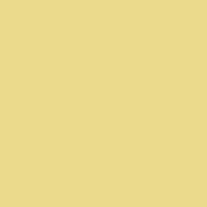 Amarillo Custard Pantone 2015