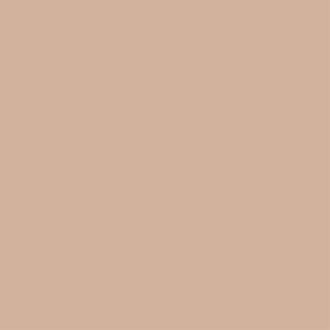Color Almendra Tostada Pantone 2015