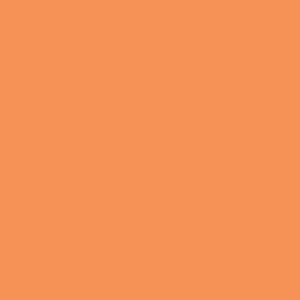 Naranja mandarina Pantone 2015