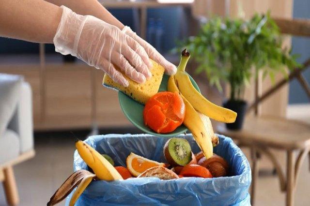 Artigo: Cinco maneiras de evitar o desperdício de alimentos e ajudar o planeta | Revista SuplementAção