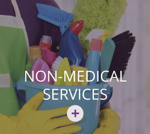Non-Medical Services