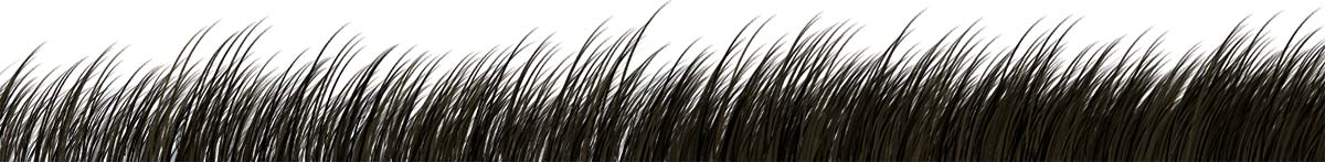 Thicker Hair Guarantee