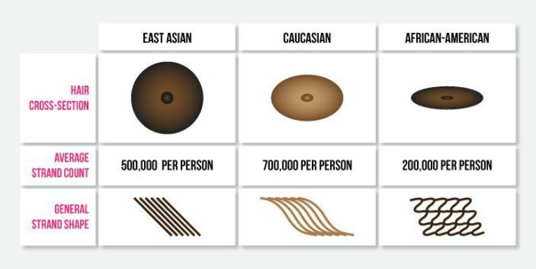 Asian hair vs other hair types