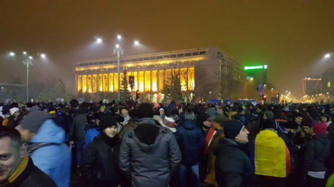 protest guvern