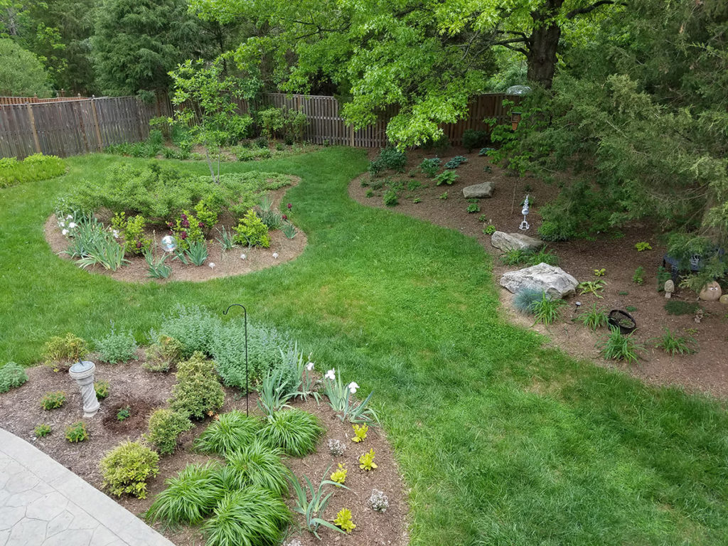 Landscaping A Wooded Lot
