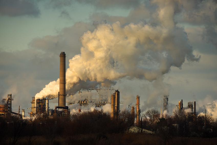 Plus de 15 000 scientifiques ont signé un manifeste concernant l'état alarmant de la planète Terre