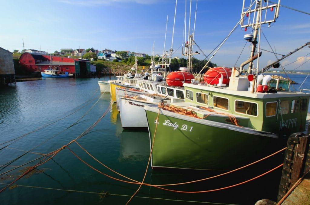 La pêche : entre enjeux de souveraineté et gouvernance partagée