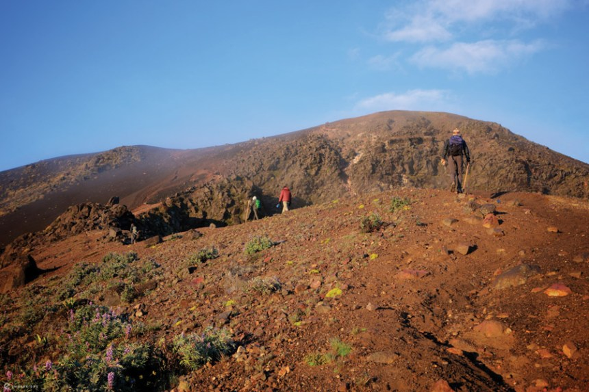 The topography of Acatenango changes dramatically as you exit the timberline.