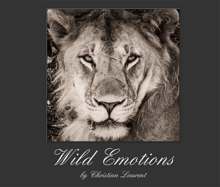 WildEmotions_1