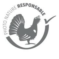 logo-salamandre-charte-photo