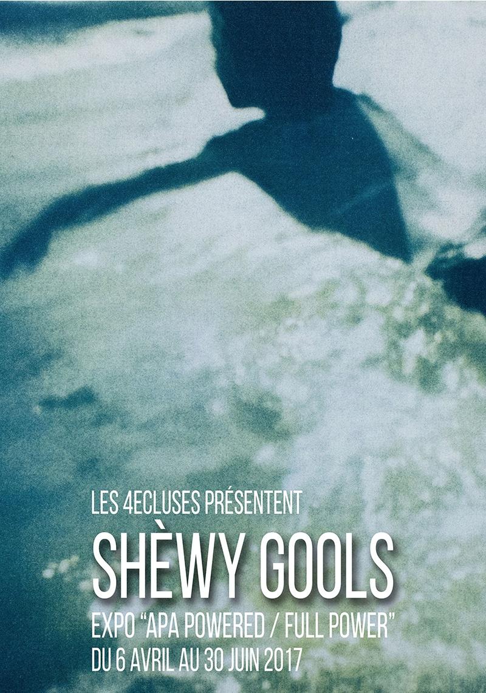 Shewy Gools - Alexandre Lecomte