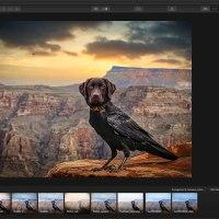 Tuto.com : Photomontage avec Luminar