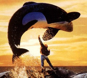 286- FREE WILLY