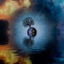 In The World Tree